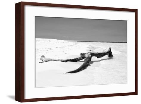 Cuba Fuerte Collection B&W - Black Tree-Philippe Hugonnard-Framed Art Print