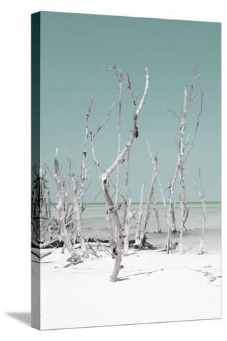 Cuba Fuerte Collection - Wild White Sand Beach II - Pastel Coral Green-Philippe Hugonnard-Stretched Canvas Print
