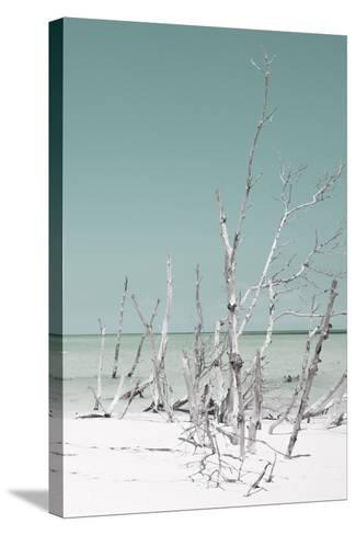 Cuba Fuerte Collection - Wild White Sand Beach III - Pastel Coral Green-Philippe Hugonnard-Stretched Canvas Print