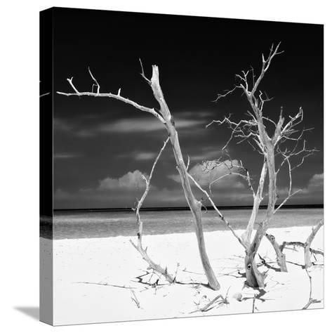 Cuba Fuerte Collection SQ BW - Stillness-Philippe Hugonnard-Stretched Canvas Print
