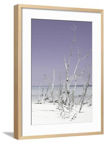 Cuba Fuerte Collection - Wild White Sand Beach III - Pastel Mauve-Philippe Hugonnard-Framed Art Print