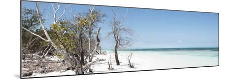 Cuba Fuerte Collection Panoramic - Sandy Beach Pastel Blue-Philippe Hugonnard-Mounted Photographic Print