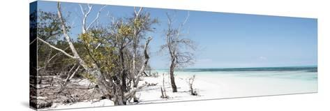 Cuba Fuerte Collection Panoramic - Sandy Beach Pastel Blue-Philippe Hugonnard-Stretched Canvas Print