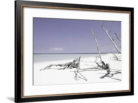 Cuba Fuerte Collection - Wild Purple Lagoon-Philippe Hugonnard-Framed Art Print