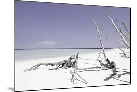 Cuba Fuerte Collection - Wild Purple Lagoon-Philippe Hugonnard-Mounted Photographic Print