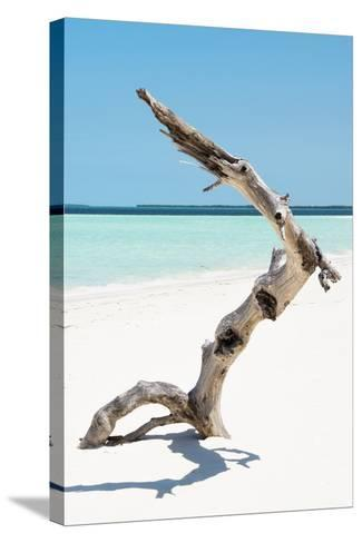 Cuba Fuerte Collection - Alone on the White Sandy Beach II-Philippe Hugonnard-Stretched Canvas Print