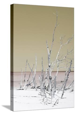 Cuba Fuerte Collection - Wild White Sand Beach III - Pastel Dark Yellow-Philippe Hugonnard-Stretched Canvas Print