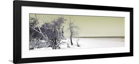 Cuba Fuerte Collection Panoramic - Sandy Beach Pastel Olive-Philippe Hugonnard-Framed Art Print