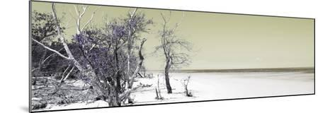 Cuba Fuerte Collection Panoramic - Sandy Beach Pastel Olive-Philippe Hugonnard-Mounted Photographic Print