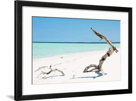 Cuba Fuerte Collection - Alone on the White Sandy Beach-Philippe Hugonnard-Framed Art Print