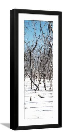 Cuba Fuerte Collection Panoramic - White Forest-Philippe Hugonnard-Framed Art Print