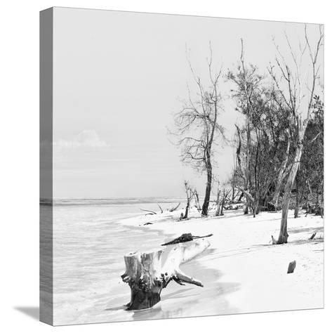 Cuba Fuerte Collection SQ BW - White Sand Beach-Philippe Hugonnard-Stretched Canvas Print