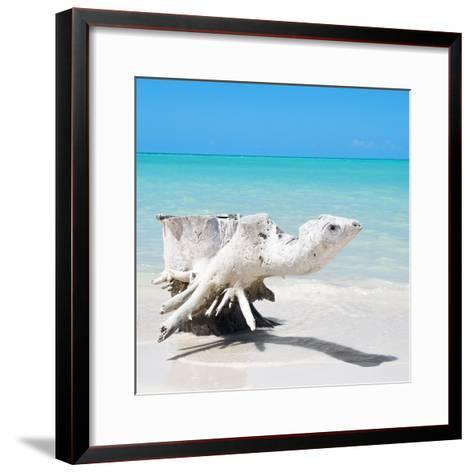 Cuba Fuerte Collection SQ - Wooden Turtle on the Beach-Philippe Hugonnard-Framed Art Print
