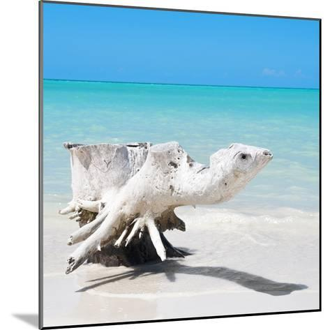 Cuba Fuerte Collection SQ - Wooden Turtle on the Beach-Philippe Hugonnard-Mounted Photographic Print