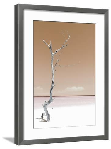 Cuba Fuerte Collection - Solitary Tree - Pastel Orange-Philippe Hugonnard-Framed Art Print