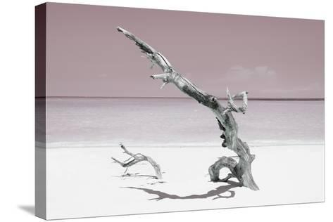 Cuba Fuerte Collection - Solitary Tree on the Beach - Pastel Red-Philippe Hugonnard-Stretched Canvas Print