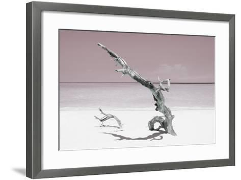 Cuba Fuerte Collection - Solitary Tree on the Beach - Pastel Red-Philippe Hugonnard-Framed Art Print