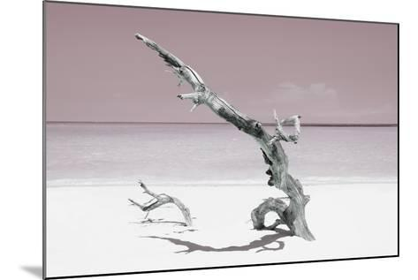 Cuba Fuerte Collection - Solitary Tree on the Beach - Pastel Red-Philippe Hugonnard-Mounted Photographic Print
