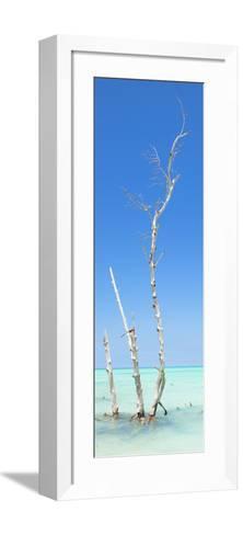 Cuba Fuerte Collection Panoramic - Ocean Nature-Philippe Hugonnard-Framed Art Print
