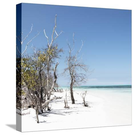 Cuba Fuerte Collection SQ - Sandy Beach Pastel Blue-Philippe Hugonnard-Stretched Canvas Print