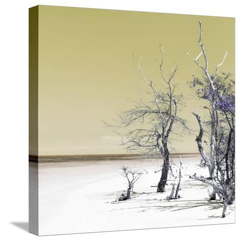 Cuba Fuerte Collection SQ - Yellow Summer-Philippe Hugonnard-Stretched Canvas Print