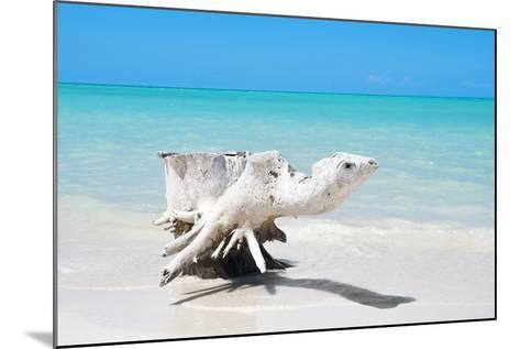 Cuba Fuerte Collection - Wooden Turtle on the Beach-Philippe Hugonnard-Mounted Photographic Print
