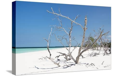 Cuba Fuerte Collection - Tropical Beach Nature-Philippe Hugonnard-Stretched Canvas Print