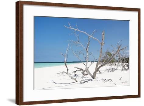 Cuba Fuerte Collection - Tropical Beach Nature-Philippe Hugonnard-Framed Art Print