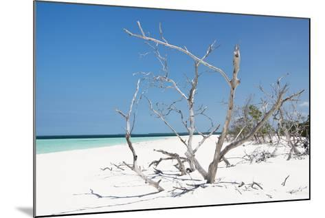 Cuba Fuerte Collection - Tropical Beach Nature-Philippe Hugonnard-Mounted Photographic Print