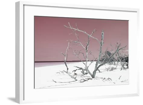 Cuba Fuerte Collection - Tropical Beach Nature - Pastel Red-Philippe Hugonnard-Framed Art Print