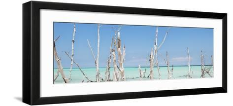Cuba Fuerte Collection Panoramic - Ocean Wild Nature-Philippe Hugonnard-Framed Art Print
