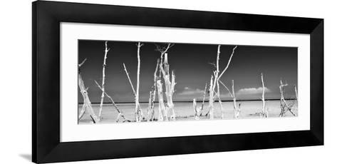 Cuba Fuerte Collection Panoramic BW - Ocean Wild Nature-Philippe Hugonnard-Framed Art Print