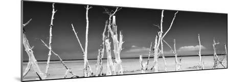 Cuba Fuerte Collection Panoramic BW - Ocean Wild Nature-Philippe Hugonnard-Mounted Photographic Print