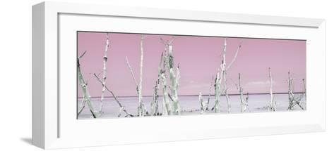 Cuba Fuerte Collection Panoramic - Ocean Wild Nature - Pastel Pink-Philippe Hugonnard-Framed Art Print