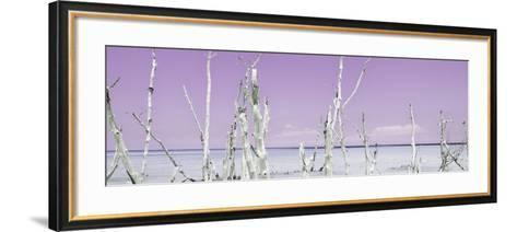 Cuba Fuerte Collection Panoramic - Ocean Wild Nature - Pastel Purple-Philippe Hugonnard-Framed Art Print