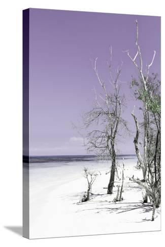 Cuba Fuerte Collection - Plum Summer-Philippe Hugonnard-Stretched Canvas Print