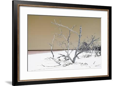 Cuba Fuerte Collection - Tropical Beach Nature - Pastel Orange-Philippe Hugonnard-Framed Art Print