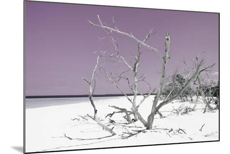 Cuba Fuerte Collection - Tropical Beach Nature - Pastel Purple-Philippe Hugonnard-Mounted Photographic Print