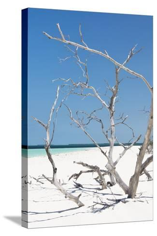 Cuba Fuerte Collection - Tropical Beach Nature II-Philippe Hugonnard-Stretched Canvas Print