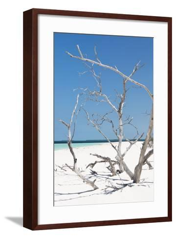 Cuba Fuerte Collection - Tropical Beach Nature II-Philippe Hugonnard-Framed Art Print