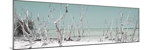 Cuba Fuerte Collection Panoramic - Wild Beach - Pastel Turquoise-Philippe Hugonnard-Mounted Photographic Print