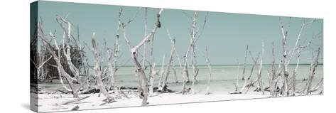 Cuba Fuerte Collection Panoramic - Wild Beach - Pastel Turquoise-Philippe Hugonnard-Stretched Canvas Print