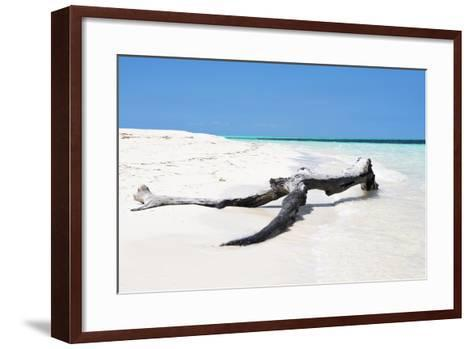 Cuba Fuerte Collection - Black Tree on the Beach-Philippe Hugonnard-Framed Art Print
