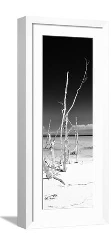 Cuba Fuerte Collection Panoramic BW - Wild White Sand Beach II-Philippe Hugonnard-Framed Art Print