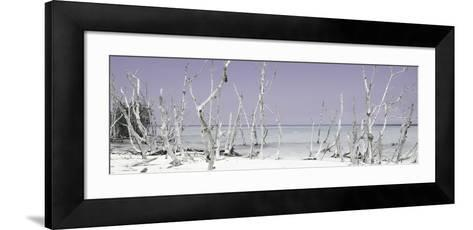 Cuba Fuerte Collection Panoramic - Wild Beach - Pastel Mauve-Philippe Hugonnard-Framed Art Print