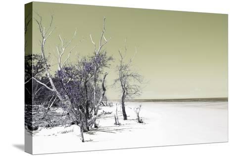 Cuba Fuerte Collection - Sandy Beach Pastel Olive-Philippe Hugonnard-Stretched Canvas Print