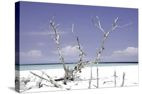 Cuba Fuerte Collection - Beautiful Wild Beach II-Philippe Hugonnard-Stretched Canvas Print