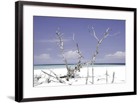 Cuba Fuerte Collection - Beautiful Wild Beach II-Philippe Hugonnard-Framed Art Print