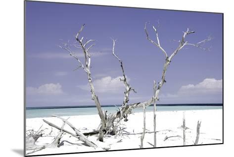 Cuba Fuerte Collection - Beautiful Wild Beach II-Philippe Hugonnard-Mounted Photographic Print