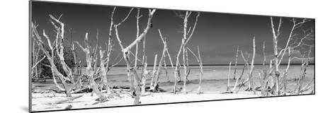 Cuba Fuerte Collection Panoramic BW - Wild Beach-Philippe Hugonnard-Mounted Photographic Print